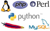 LAMP VPS includes Linux, Apache, MySQL, PHP / Perl / Python